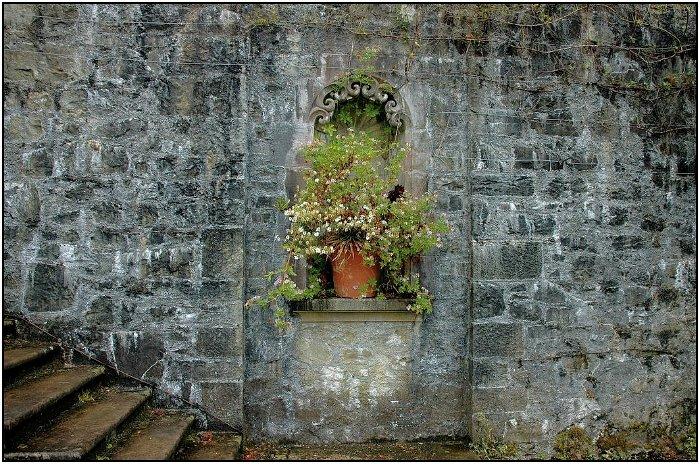 Image Result For Garden Sculptures