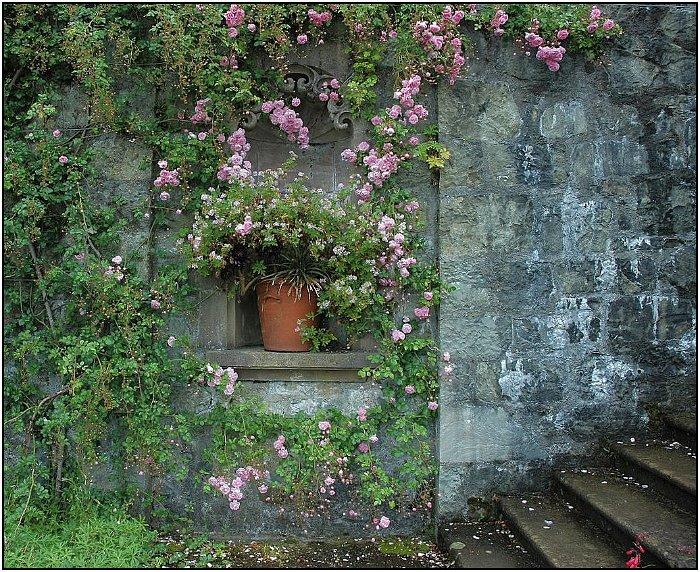 19. scotland, torosay castle, italian garden
